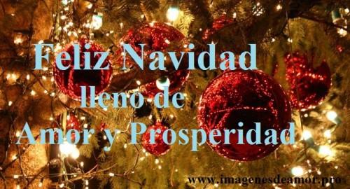 navidadfeliz-jpg13