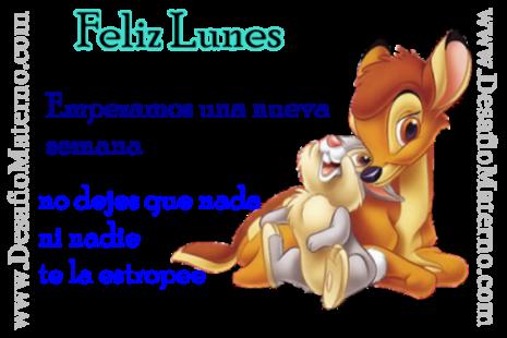 zulufeliz-lunes-2