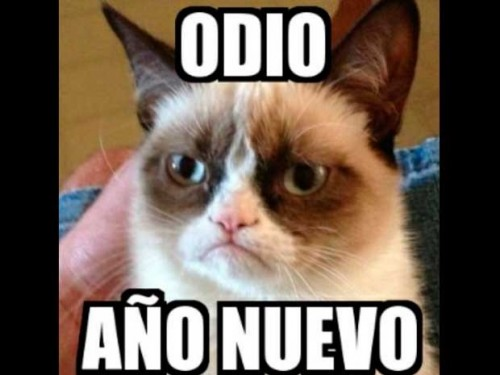 Memes Divertidos De Año Nuevo Para Whatsapp Imágenes Para Whatsapp