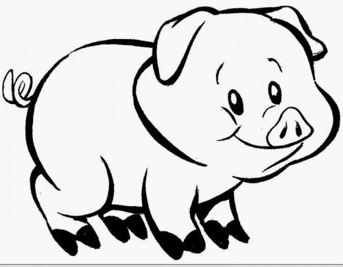 Dia Del Animal 29 De Abril Frases Imágenes Carteleras Imágenes