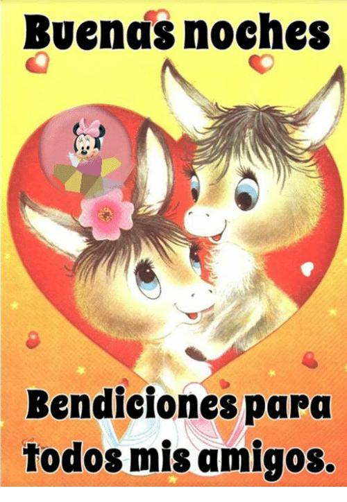 Buenas Noches Imagenes Con Animales Imagenes Para Whatsapp