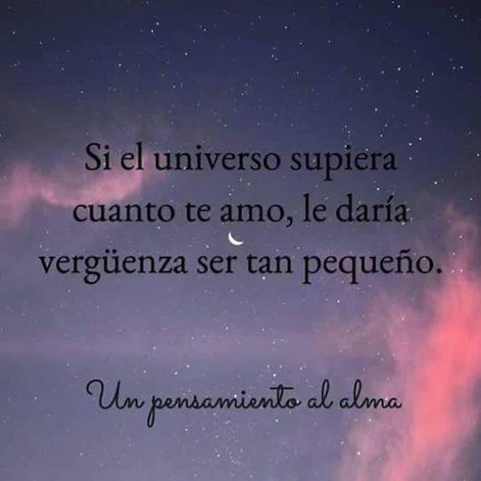 Imagenes De Te Amo Mi Amor Tumblr Frases