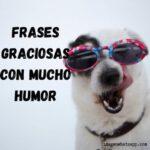 80 Frases graciosas con mucho humor para Whatsapp