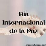 Día Internacional de la Paz: Mensajes, frases, reflexiones sobre la no violencia
